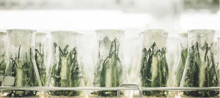 Une étude menée par la Fondation pour la recherche sur la biodiversité propose des recommandations pour une meilleure collaboration entre chercheurs et gestionnaires d'espaces naturels.