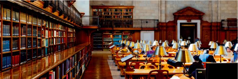 La revue systématique, méthode de réalisation de synthèses bibliographiques, est en plein essor dans le secteur environnemental.