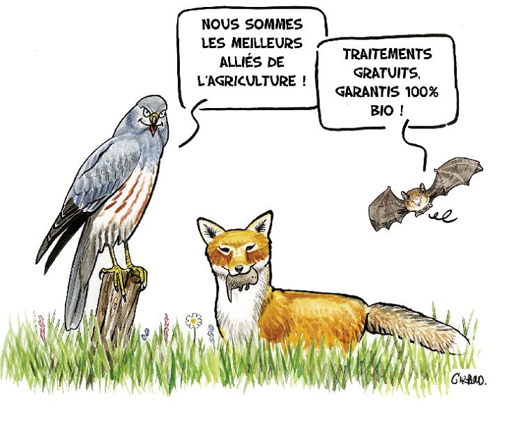 S'adapter à l'espèce et au public
