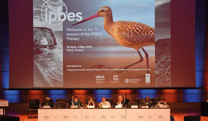 Inauguration de la 7e session plénière de l'IPBES à Paris (Mai 2019).© IPBES