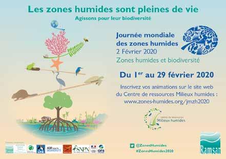 L'actu de la biodiversité sélectionnée pour vous sur Scoop.it
