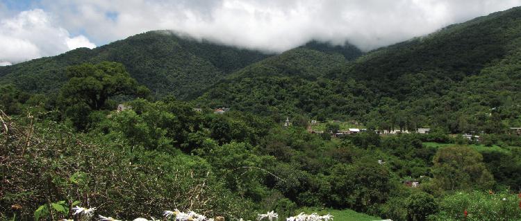 Village de San Francisco dans les Yungas, province de Jujuy, Argentine.