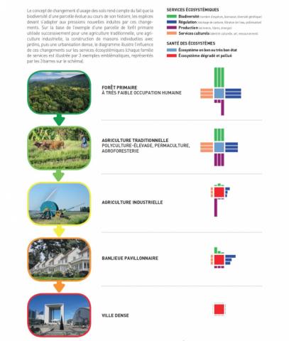 Source : Gilles Landrieu, adapté d'un schéma de Van der Esch et al. (2017) publié dans le rapport IPBES « Évaluation de la dégradation et de la restauration des terres » (2018) - Crédits photos : Pixabay, Bernard Patin et Gilles Landrieu