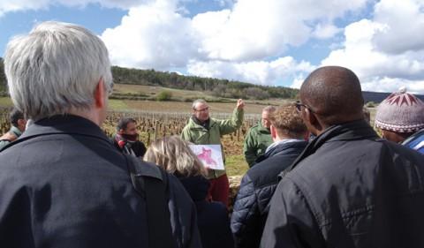 Lecture du paysage sur le site des Climats du vignoble de Bourgogne inscrit au Patrimoine mondial lors de la formation internationale RGSF 2019. © RGSF