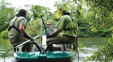 Pêche électrique réalisée par une équipe de l'Onema, méthode d'évaluation de la qualité des eaux.