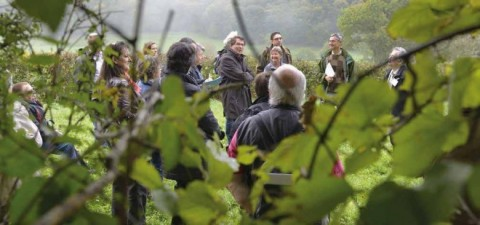 Séance de lecture du paysage au pied du mont Beuvray : le débat contradictoire est bien plus facile les pieds dans l'herbe face à un point de vue précis que dans une salle dont le cadre formel conduit chacun à défendre une posture