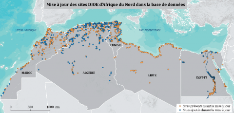 Carte des sites suivis, avant et après la mise en place du Réseau d'oiseaux d'eau Méditerranée. Le nombre de points en bleu (nouveaux sites) témoigne de l'implication renforcée des acteurs nationaux dans le réseau. © M. Suet – Tour du Valat / ONCFS