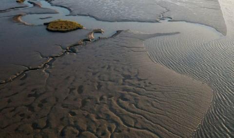 La baie de l'Aiguillon vue depuis un drone. © DR