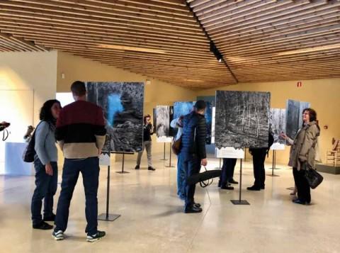 Exposition à la Réserve naturelle nationale de la forêt de la Massane début 2019. © Diane Sorel