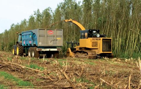 La matière issue de travaux d'entretien est transformée de façon à être valorisée en chaufferie bois.